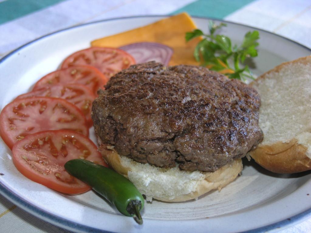 Venison Burger, copyright Al Cambronne